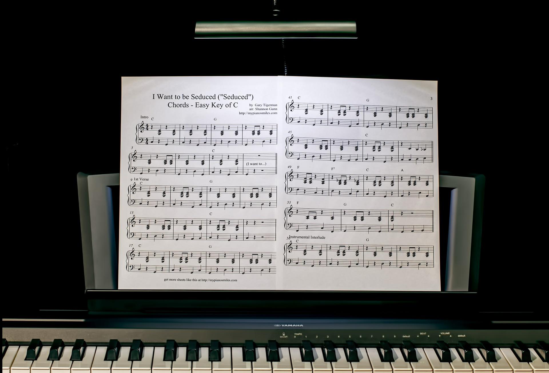 piano-lesson-422832_1920